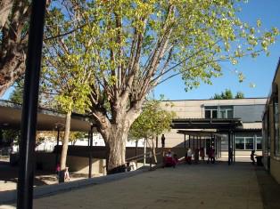 Biblioteca da Escola Básica nº 3